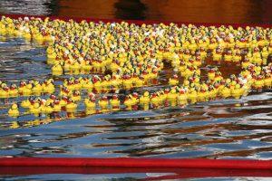 Hafenfest Foehr 2012